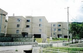 公営住宅(稲穂団地)